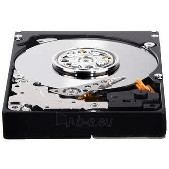 WD XE 450GB 2.5'' SAS2 10K 32MB Paveikslėlis 1 iš 1 250255510340