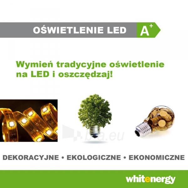 WE LED juosta 5m | 60vnt/m | 3528 | 4.8W/m | 6000K šalta balta | be jungties Paveikslėlis 4 iš 4 310820049436