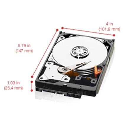Western Digital Red WD20EFRX 2TB 3.5'' 64MB SATAIII 6 Gb/s Paveikslėlis 1 iš 1 250255510454