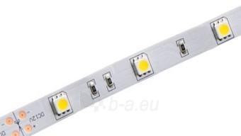 Whitenergy LED juosta 5m   30vnt/m   5050   7.2W/m   12V DC   6500K šalta balta Paveikslėlis 2 iš 4 310820049425