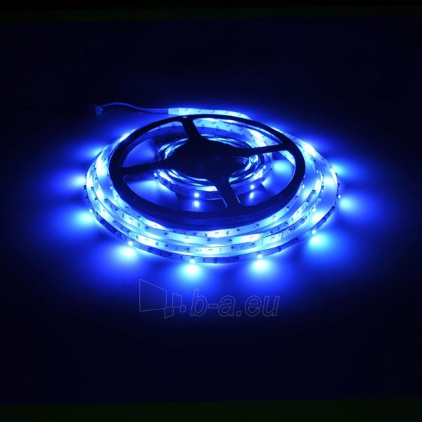 Whitenergy LED juosta 5m | 3528 | 4.8W/m | 12V DC | RGB Paveikslėlis 10 iš 10 310820049442
