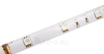 Whitenergy LED juosta atsapri vandeniui 5m | 30vnt/m | 5050| 7.2W/m| 12V DC| RGB Paveikslėlis 2 iš 7 310820049439