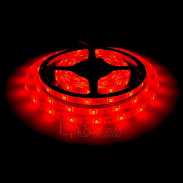 Whitenergy LED juosta atsapri vandeniui 5m | 30vnt/m | 5050| 7.2W/m| 12V DC| RGB Paveikslėlis 5 iš 7 310820049439
