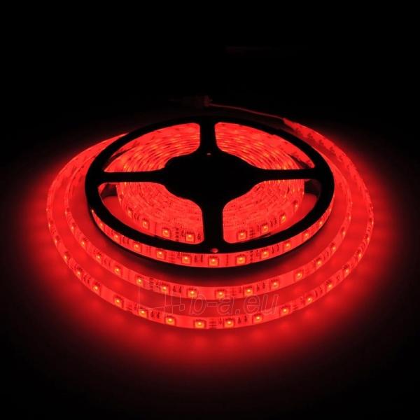 Whitenergy LED juosta atsapri vandeniui 5m | 60vnt/m| 5050| 14.4W/m| 12V DC| RGB Paveikslėlis 5 iš 7 310820049434