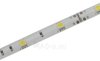 Whitenergy LED juosta atspari vandeniui 5m | 30vnt/m| 5050| 7.2W/m| šilta balta Paveikslėlis 2 iš 4 310820049433