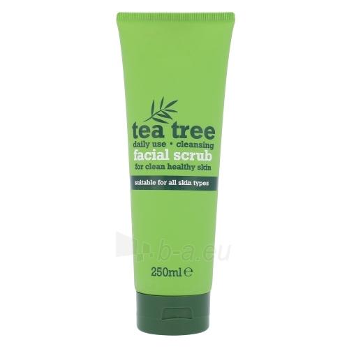 Xpel Tea Tree Facial Scrub Cosmetic 250ml Paveikslėlis 1 iš 1 310820045308