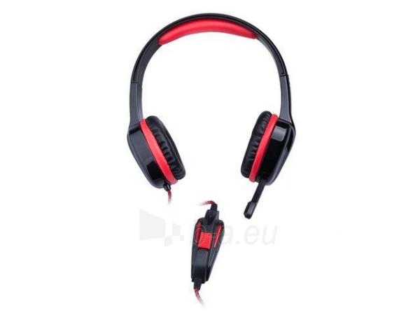 Žaidimų ausinės su mikrofonu Natec Genesis H22, 2 x Mini Jack 3.5mm Paveikslėlis 4 iš 6 250255090965