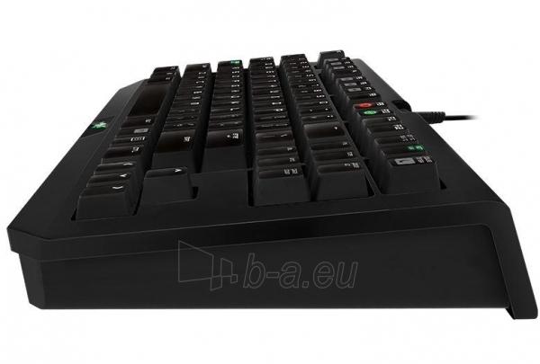 Žaidimų klaviatūra Razer BlackWidow Tournament 2014 Paveikslėlis 3 iš 3 250255701167