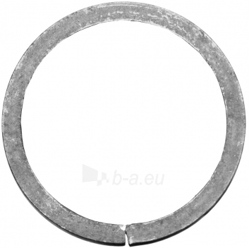 Žiedas J120, L01SP041 Paveikslėlis 1 iš 1 310820027248