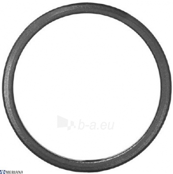 Žiedas K120, L01SP072 Paveikslėlis 1 iš 2 310820027254